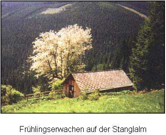 Stanglalm