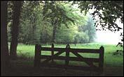 hekje in de bossen bij Doetinchem