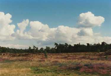 Landgoed Heidestein te Driebergen
