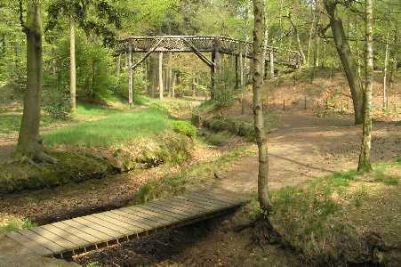 Zwitserse brug in het Rijsenburgse bos